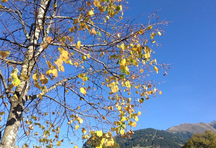 Scheint fast, als sei der Herbst gekommen. Und mit ihm die trockene Luft.
