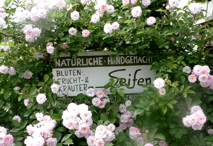 Warum diese Rosen wichtiger sind als die Reklame