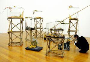 """Die Installation """"Florastrale"""" mit ihren neun teilverglasten Naturszenen in der Totale."""